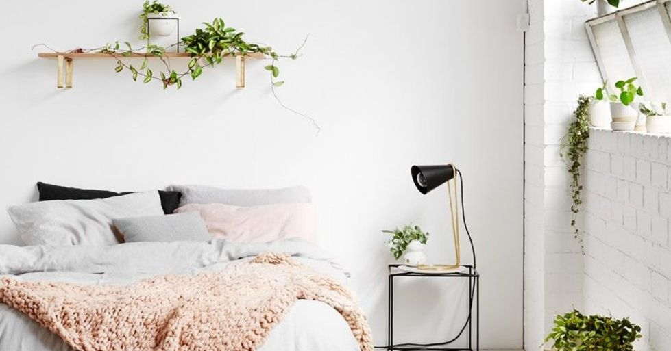 20 On Trend Ways To Display Plants And Flowers In Your Home | Stylist